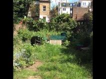 NW6 Garden Before
