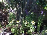 Reveal Gardens NW6