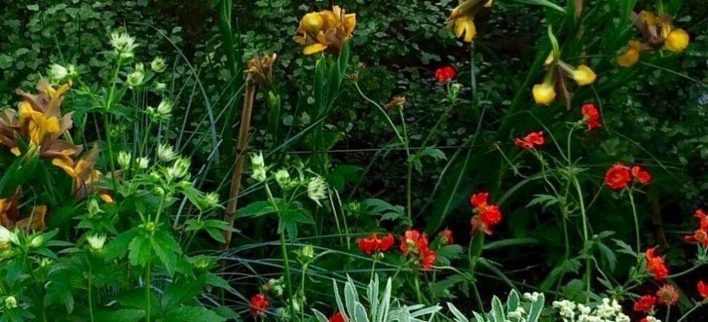 Reveal Gardens